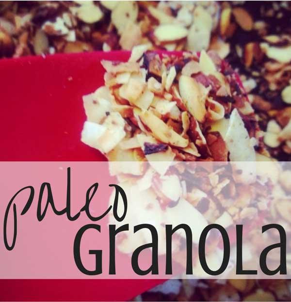 paleo granola