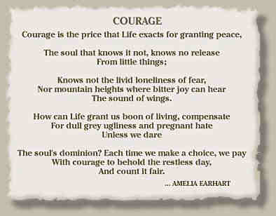 The Courage to Fly: Amelia Earhart on Life and Flight ...