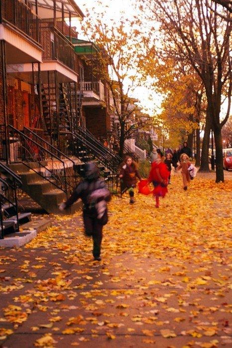 Halloween: love it or hate it?