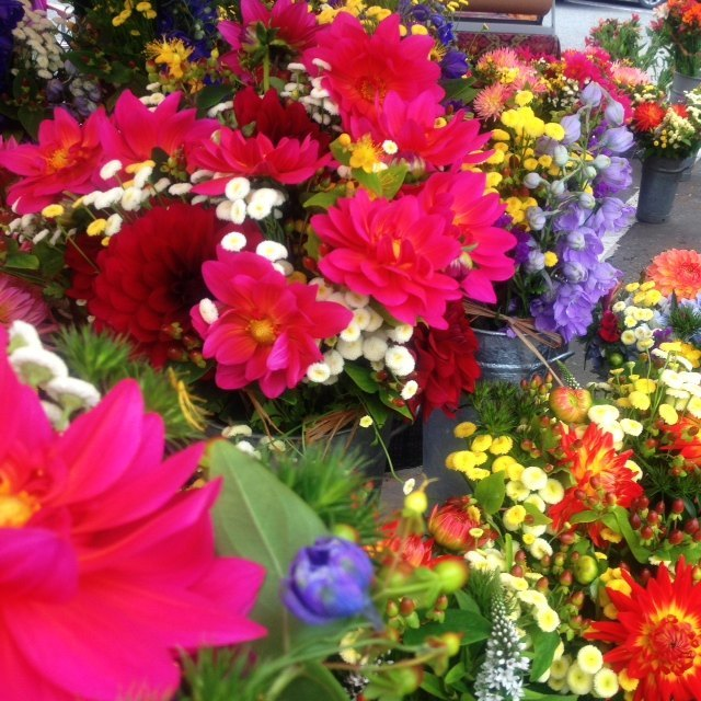 farmersmarketflowers