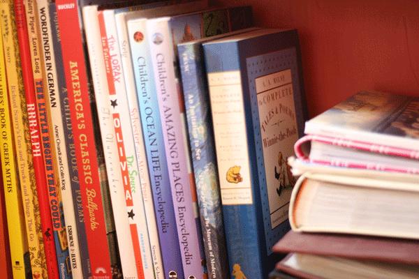 bookshelves-bottom-left