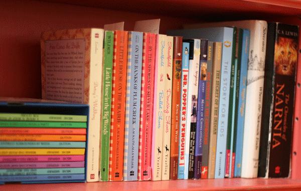 bookshelves-wilder