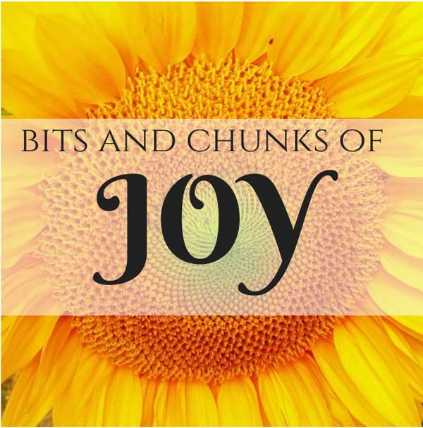 The bits and chunks of joy list