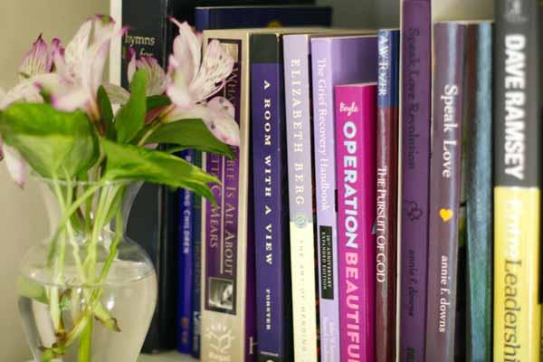 rainbow-bookshelves-5-purple