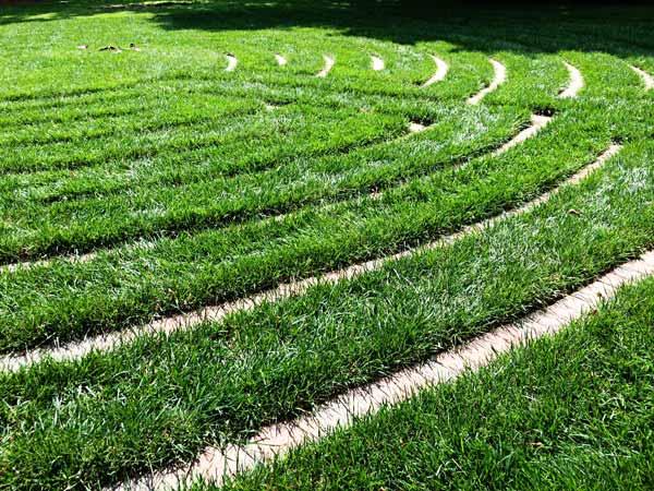 Walking in circles.