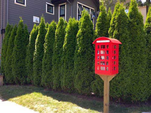 red-phone-booth-little-free-library