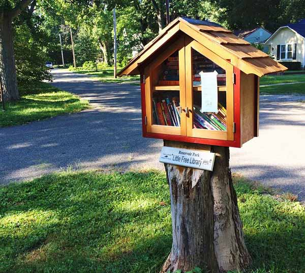 WSIRN Ep 260: A little free library with a life of its own