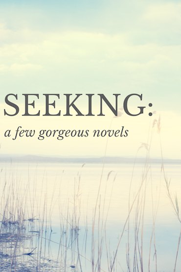 Seeking: a few gorgeous novels | Modern Mrs Darcy