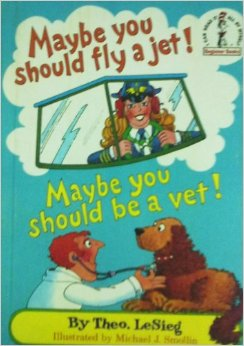 MAYBE YOU SHOULD FLY A JET!