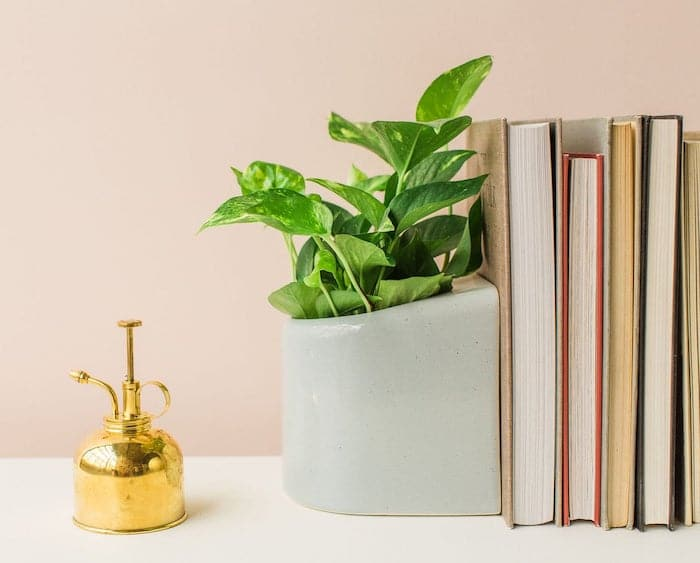 The MMD 2020 gift guide for book lovers