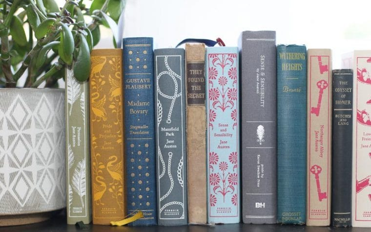 classic book spines on a window sill