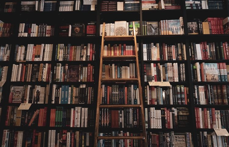 WSIRN Ep 262: Books that deliver a little depth, a little distraction