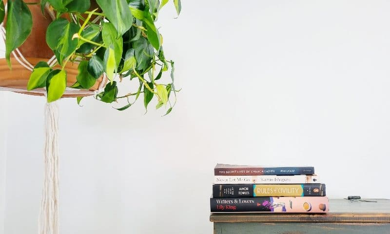 14 introspective literary fiction books that are excellent on audio