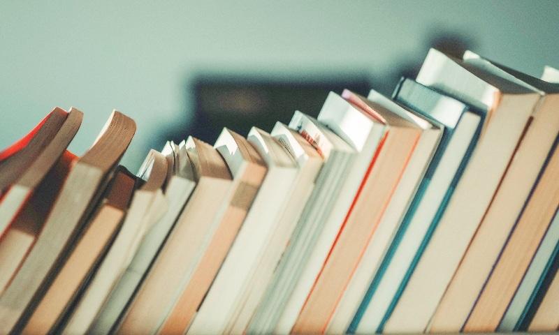 WSIRN Ep 281: Authors who make you feel seen