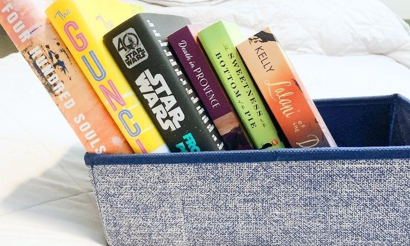 WSIRN Ep 291: The best books of summer (so far)
